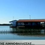 Aφιέρωμα του AΝΤ1 στη λιμνοθάλασσα του Μεσολογγίου