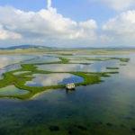 Υδροβιότοπος Λούρου: Ο επίγειος παράδεισος της Δυτικής Ελλάδας