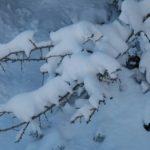 Εικόνες από τα χιονισμένα Ακαρνανικά Όρη!