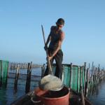 Η εκπομπή «Τοπικές Κουζίνες» στη λιμνοθάλασσα του Μεσολογγίου