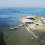 Δείτε την εκπομπή «Τοπικές Κουζίνες» και το αφιέρωμα στη λιμνοθάλασσα Μεσολογγίου