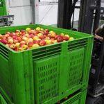 Δυνατότητες εξαγωγικής συνεργασίας στην Αμερική για τις επιχειρήσεις στην Αιτωλοακαρνανία