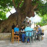 Τα ελληνικά χωριά ερημώνουν, του Αλέκου Λιδωρίκη