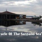 «Το θαύμα της θάλασσας των Σαργασσών», η νέα ταινία του Σύλλα Τζουμέρκα που γυρίζεται στο Μεσολόγγι