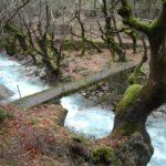 Τα νεραϊδογέφυρα στο ορεινό Θέρμο