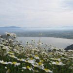 Ανοιξιάτικα τοπία από Καλύβια, Αχελώο, λίμνη Οζερού και βελανιδοδάσος Ξηρομέρου