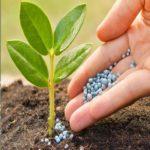 Ημερίδα για την ορθολογική χρήση φυτοφαρμάκων από τον Σύνδεσμο Γεωπόνων Νομού Αιτωλίας και Ακαρνανίας