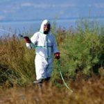 Τα κουνούπια κάνουν… πάρτι σε Μεσολόγγι, Αιτωλικό και Οινιάδες
