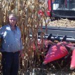 Καλαμπόκι «γίγας» ύψους 4 μέτρων συγκόμισε αγρότης από τον Ξερόκαμπο Αμφιλοχίας