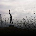 Μαύρισε ο ουρανός από τα πουλιά στο άγαλμα του λαμπαδηδρόμου στο Αντίρριο!