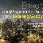 Ημερίδα για την ελαιοκαλλιέργεια στο Μεσολόγγι