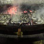 Έρχεται το Σάββατο 28 Σεπτεμβρίου η Γιορτή Ψαριού 2019 στο Αιτωλικό
