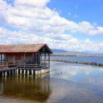 Ταξίδι στις μοναδικές πελάδες στο Μεσολόγγι