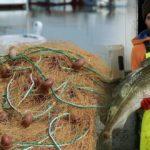 Γιώργος Αλευράς: Ένας Μεσολογγίτης κυνηγός μπακαλιάρου στην Ισλανδία