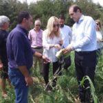 Στο Μεσολόγγι η Φωτεινή Αραμπατζή για θέματα αγροτικής ανάπτυξης