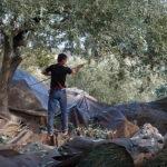 Ξεσηκωμός στο Μεσολόγγι για την τιμή της Καλαμών