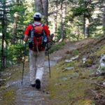 Πεζοπορία στο ελατοδάσος του Δρυμώνα διοργανώνει ο Ορειβατικός Σύλλογος Μεσολογγίου