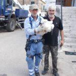 Με επιτυχία η ετήσια δακτυλίωση πελαργών στο Εθνικό Πάρκο Λιμνοθαλασσών Μεσολογγίου-Αιτωλικού