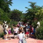 Δραστηριότητες Αγγειοπλαστικής & Γνωριμία με τη Φύση στον Βοτανικό Κήπο «Ζέλιος Γη»