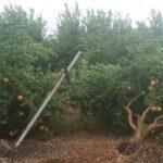 Τεράστιες καταστροφές σε καλλιέργειες στις Οινιάδες