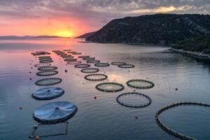 ΟΠΣΥΞ: Ψήφισμα ενάντια στο σχέδιο για τις υδατοκαλλιέργειες στο Ξηρόμερο