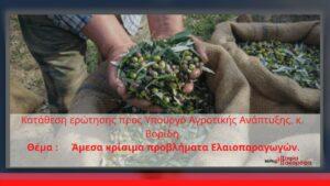 Ερώτηση της Σ. Σακοράφα για τα προβλήματα των ελαιοπαραγωγών της Αιτωλοακαρνανίας