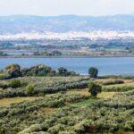 Πρόταση της Περιφέρειας για την ανθεκτικότητα Τριχωνίδας και Λυσιμαχίας στις κλιματικές αλλαγές
