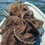 Παράνομα αλιευτικά εργαλεία εντοπίστηκαν από λιμενικούς στην Αγία Τριάδα Αιτωλικού