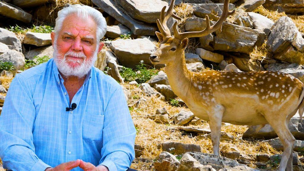 Ο Γρηγόρης Τζαμαλής και η κτηνοτροφική μονάδα του με ελάφια στη Λεπενού