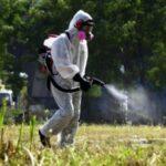 Ξεκινά ο γενικός ψεκασμός δακοκτονίας στην ΠΕ Αιτωλοακαρνανίας