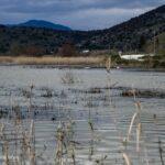 Αυθαίρετα στη λιμνοθάλασσα Μεσολογγίου – Αιτωλικού με τις ευλογίες των αρχών