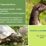 Ημερίδα για την θαλάσσια χελώνα carretta-carretta και τη βίδρα στο Μουσείο Βάσως Κατράκη στο Αιτωλικό
