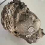 Μια κεφαλή αγάλματος ρωμαϊκής περιόδου ανασύρθηκε από τον Αμβρακικό κόλπο!